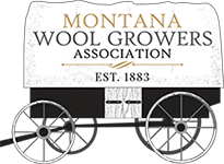 Montana Wool Growers Association